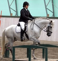 Monica Distriktsgrenledare Working Equitation
